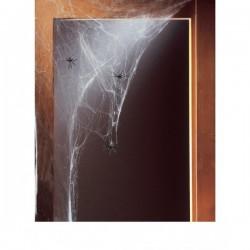 Telaraña blanca con arañas - Imagen 1