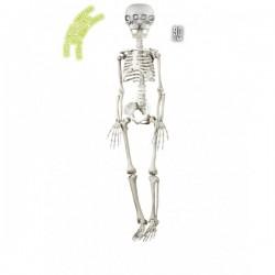 Esqueleto animado colgante - Imagen 1