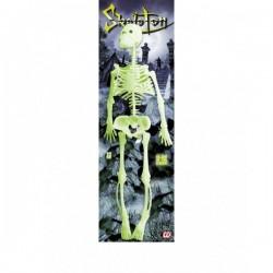 Esqueleto fluorescente de 35 cm. - Imagen 1