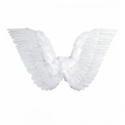 Alas de plumas blancas - Imagen 1