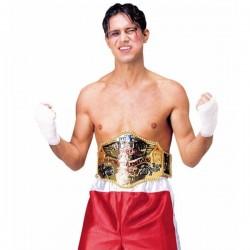 Cinturón de campeón de pesos pesados - Imagen 1