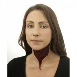 Prótesis de cuello desgarrado con cremallera - Imagen 1