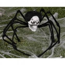 Araña calavera del terror - Imagen 1