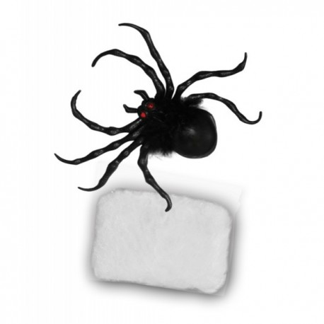 Set de araña con telaraña - Imagen 1