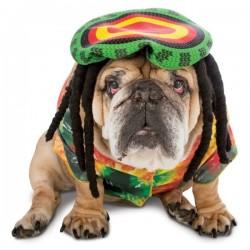 Disfraz de rastafari para perro - Imagen 1