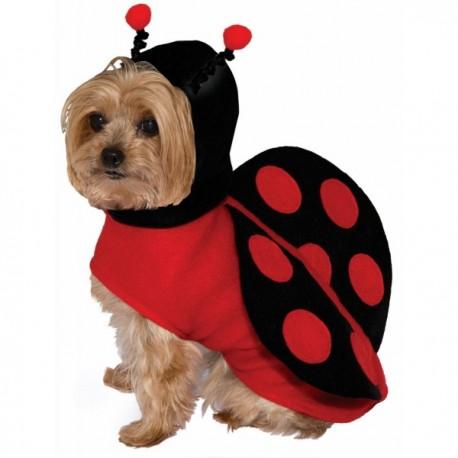 Disfraz de mariquita para perro - Imagen 1