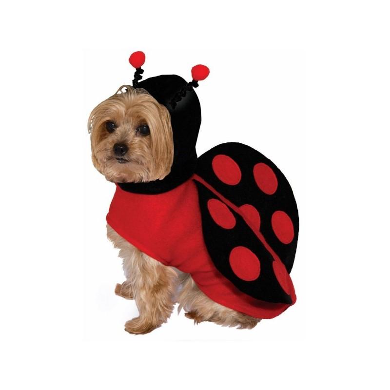 Comprar Disfraz De Mariquita Para Perro
