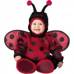 Disfraz de mariquita voladora para bebé - Imagen 1