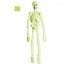 Esqueleto de laboratorio 3D fosforescente - Imagen 1
