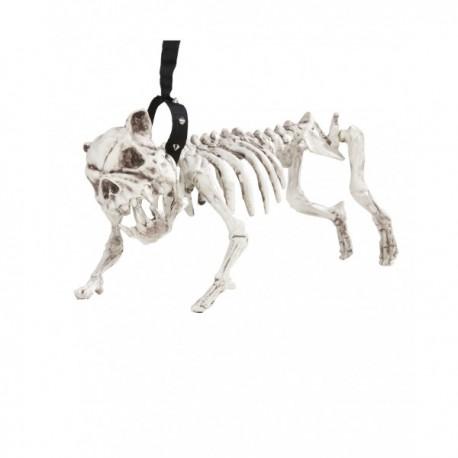 Esqueleto de perro con correa - Imagen 1