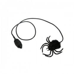 Araña peluda saltarina - Imagen 1