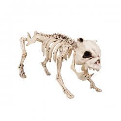 Figura decorativa de esqueleto perruno - Imagen 2