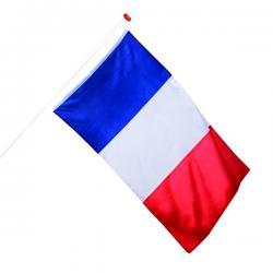 Bandera de Francia - Imagen 1