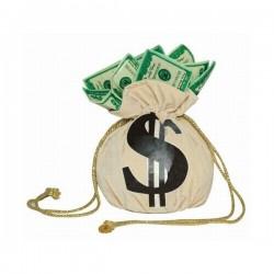 Bolsa de dinero - Imagen 1