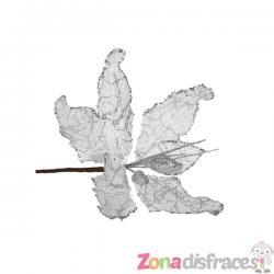 Flor de pascua plata - Imagen 1