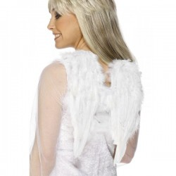 Alas de ángel blancas - Imagen 1