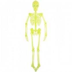Decoración de esqueleto - Imagen 1